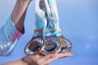 Награды выполнены по уникальной технологии из алюминиевого сплава и украшены кристаллами Сваровски.