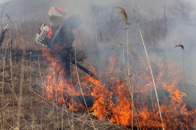 Снега нет, леса горят, люди их и поджигают, и тушат.