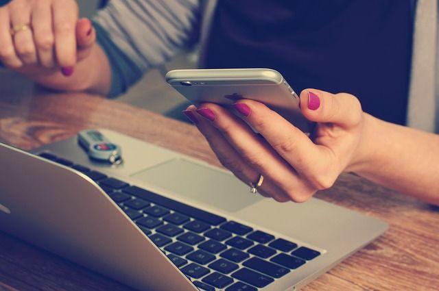 Разработка интернет-приложения может стоить пермяку свободы.