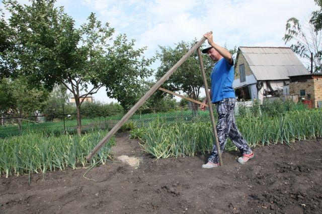 Житель Гвардейского района завладел муниципальным земельным участком