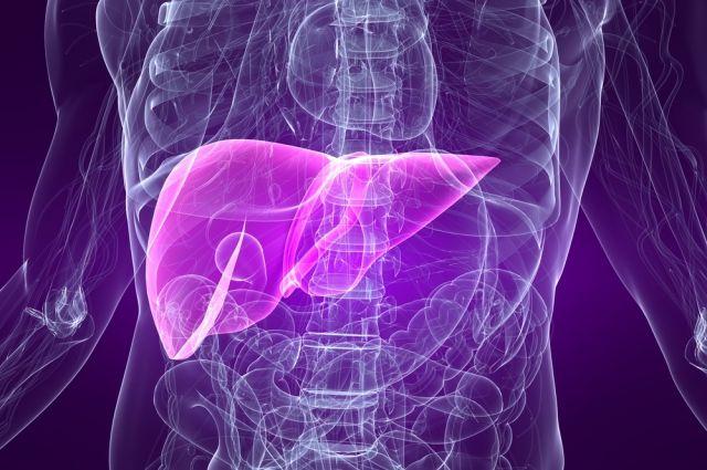 Токсины и гепатит: как отличить проблемы с печенью и что с этим делать