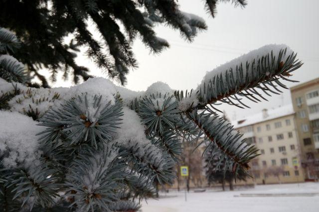 В ночные часы может наблюдаться мокрый снег, метели.