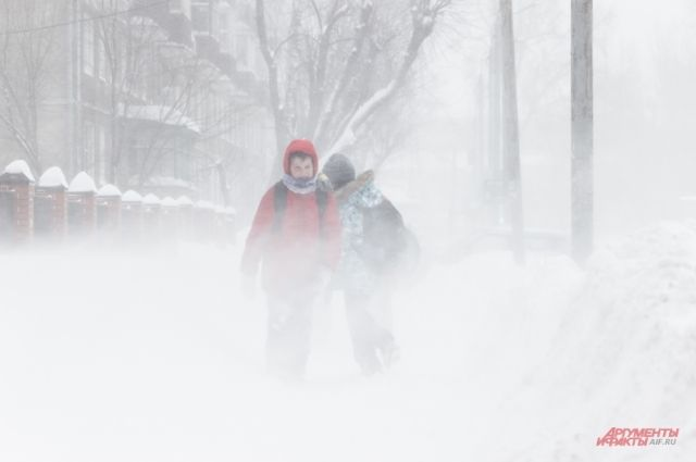 Днём 20 февраля ожидается небольшая метель, температура воздуха будет держаться на отметке минус 5-7 градусов.