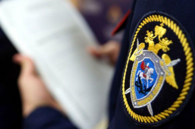 В столице России  арестовали женщину, потерявшую влесу ребенка