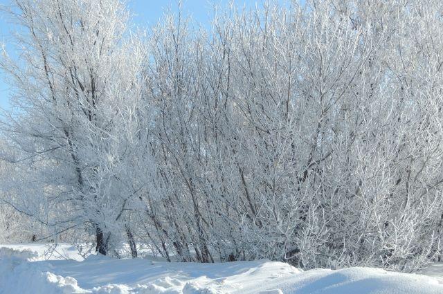 МЧС Оренбуржья: 21 февраля резко похолодает и усилится ветер