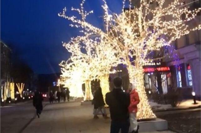 Красноярцы и гости столицы края с удовольствием фотографируются на фоне деревьев с подсветкой