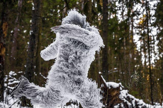 Йети глаза напротив. Почему снежного человека никак не могут поймать? - Real estate