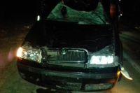 Под Мариуполем авто на полном ходу столкнулось с лошадью