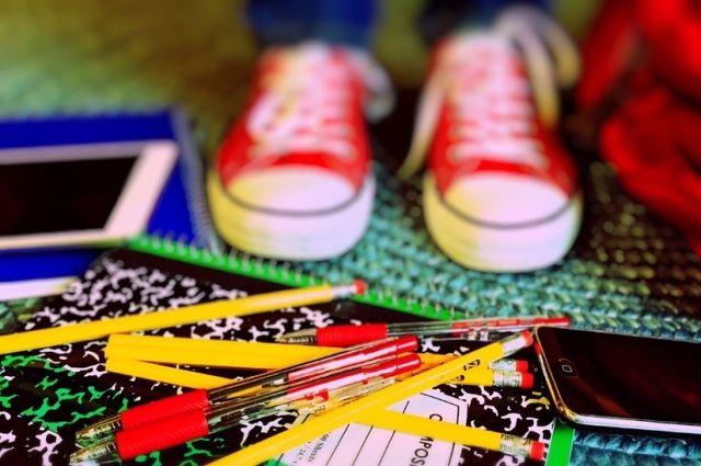 Оренбургские школьники вернутся на занятия 25 февраля