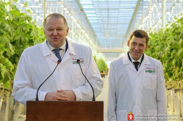 Николай Цуканов и Евгений Куйвашев во время посещения теплиц известного агропромышленного комплекса на Среднем Урале.