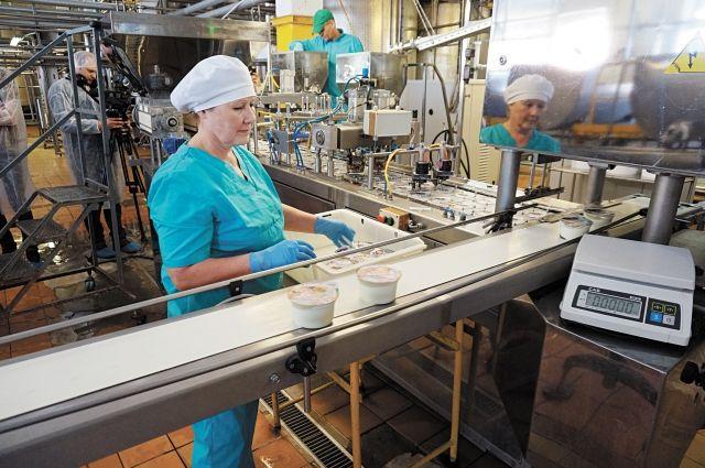 На верещагинском комбинате ежедневно перерабатывают около 70тонн молока высшего сорта.