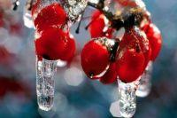 27 февраля: день Кирилла Весноуказчика, как ранее узнавали о будущей погоде