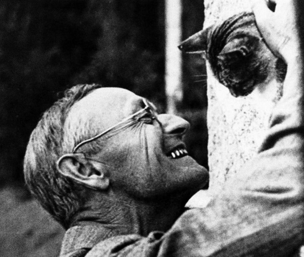Немецкий писатель Герман Гессе настолько любил кошек, что написал книгу «Исследования одного кота».