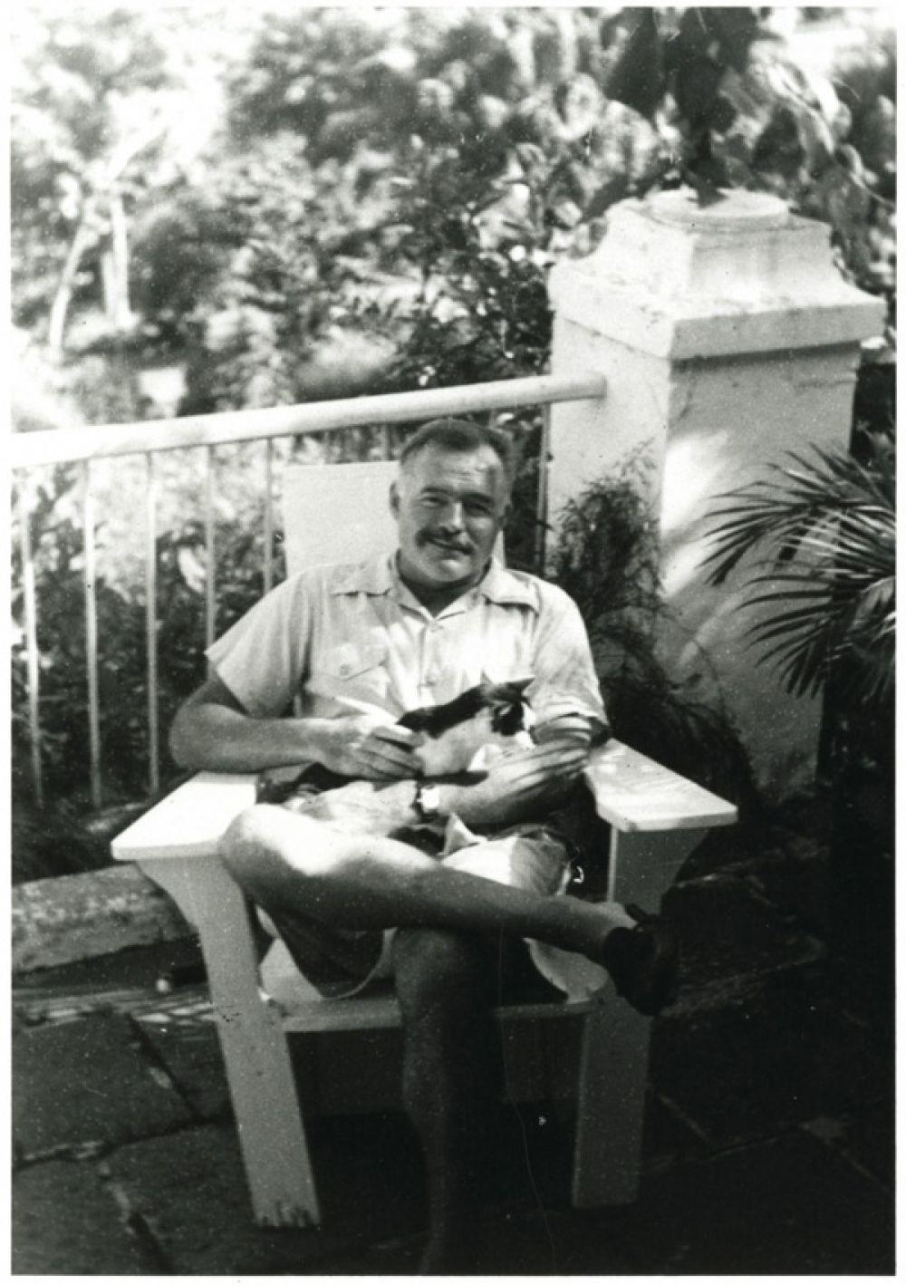 Американский писатель Эрнест Хемингуэй любил не только литературу. Ещё он очень любил кошек. К 1945 году у него дома обитали 23 этих животных.