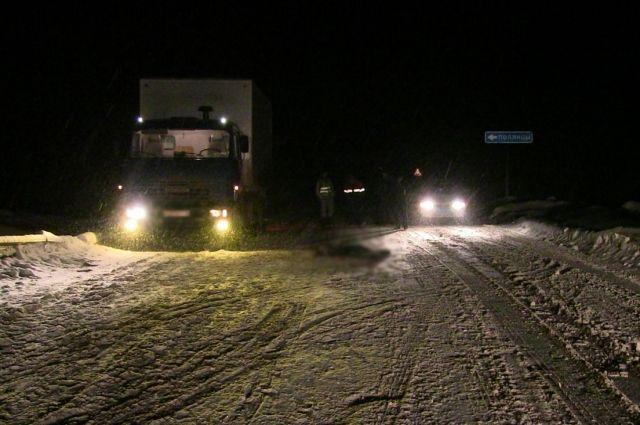 Сотрудники ГИБДД разыскивают водителя, устроившего смертельное ДТП на трассе «Игра – Селты» Игринского района.