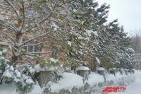 В Оренбуржье на первых весенних выходных будет снег