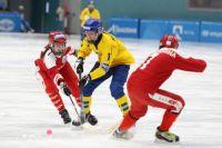Мячи в составе сборной России забивали Ольга Богданова трижды, а также Анастасия Денисова.