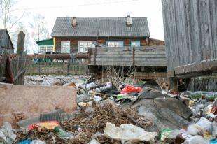 Сбор и вывоз мусора надо контролировать, иначе экологической катастрофы не избежать.