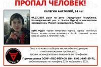 14-летний Анатолий Калегин пропал без вести в селе Малая Пурга.