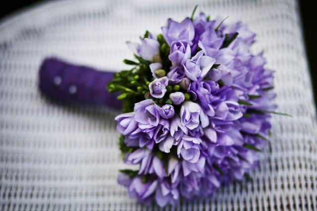 К восьмому марта в область ввезли более 7 с половиной миллионов цветов