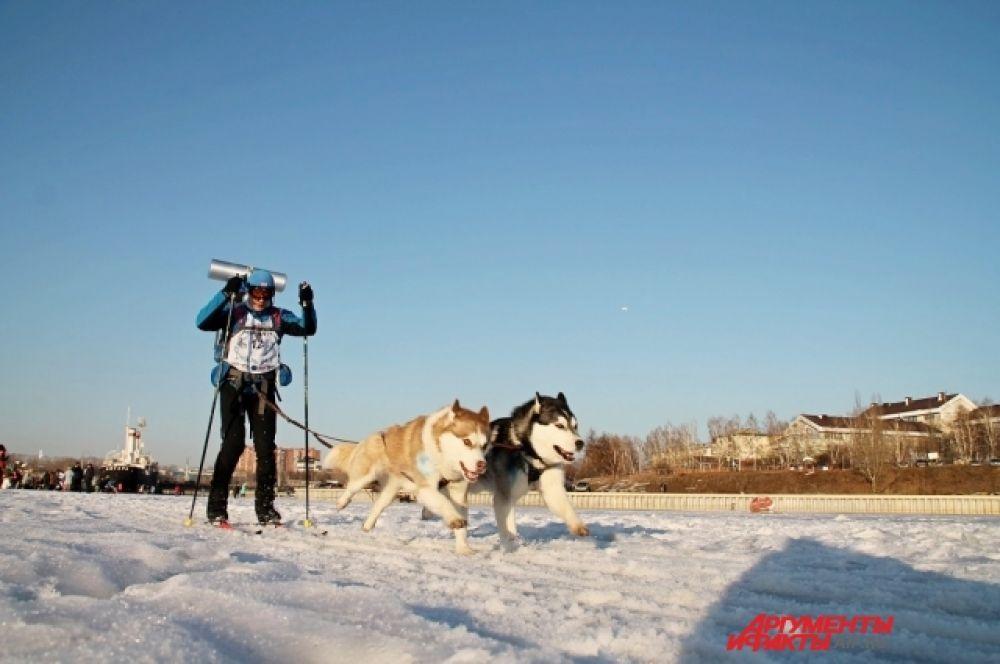 Участникам соревнований в зависимости от их результатов присвоят спортивные разряды по ездовому спорту.