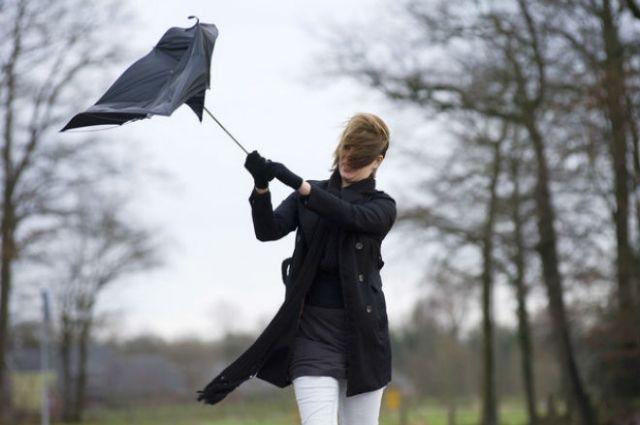 Шквальный ветер в Украине: как уберечь себя при урагане