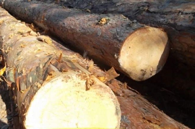 На улице Щербакова перевернулся лесовоз с бревнами
