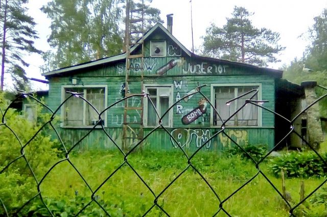 Ежегодно на летний сезон более 2 млн петербуржцев выезжают на дачи, увеличилось число тех, кто живёт там круглый год. Заброшены более 25 % участков.