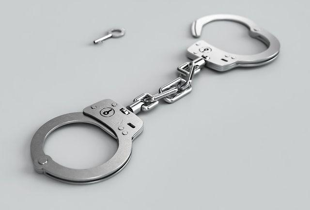 В отношении иностранца возбуждено уголовное дело за оскорбление правоохранителей
