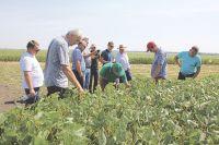 Семинар в хозяйстве Гридневых привлёк внимание фермеров западных стран.