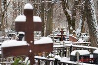 Каждое лето медведи приходят на кладбище за пропитанием и раскапывают могилы.