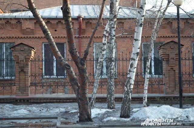 Дождь со снегом надвигаются на Красноярск.