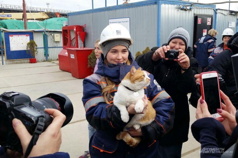 Символ Крымского моста кот Мостик.