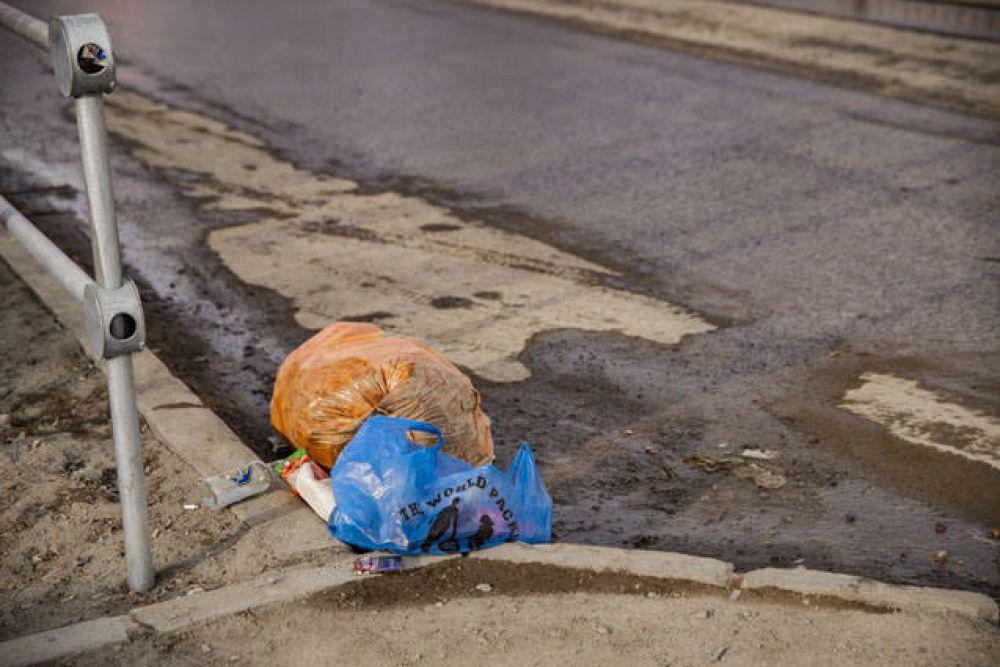 Многие новосибирцы предпочитают оставлять отходы в непредназначеных для этого местах - во дворах под окнами, возле гаражей и даже на обочинах дорог.