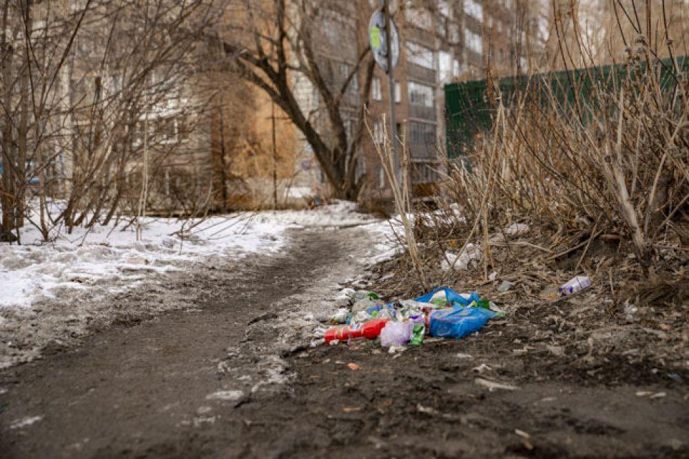 К сожалению, не все новосибирцы осознают, что чистота в городе зависит и от них самих.