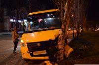 Водитель потерял сознание за рулем и автобус врезался в дерево.