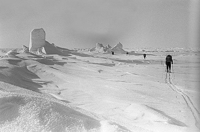 Высокоширотная научно-спортивная экспедиция на Северный полюс, 1979 г.