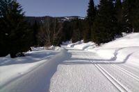 На третьем километре лыжной трассы очевидцы обнаружили лежащего без сознания мужчину.