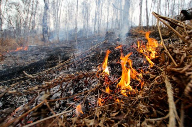Больше десяти пожаров было потушено за выходные в Хакасии.