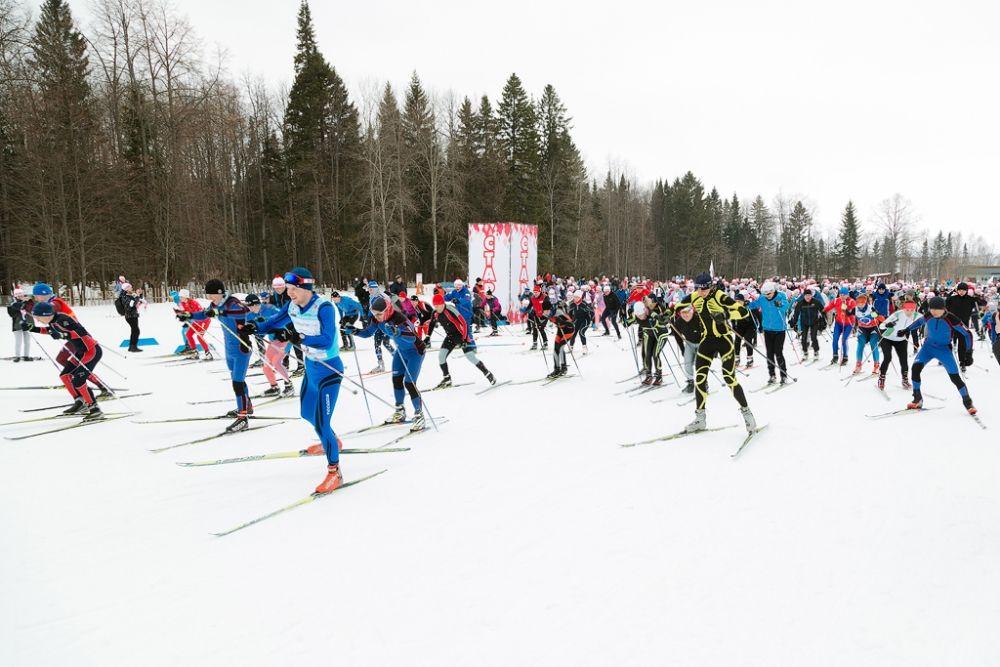 В забеге приняли участие более 900 человек.