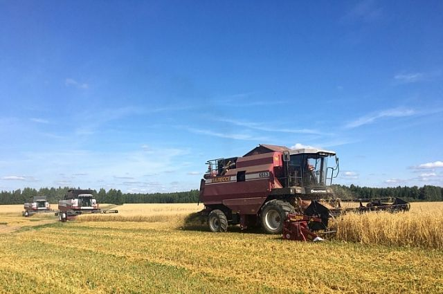 Сельхозкооперативы создадут на «дальневосточных гектарах».
