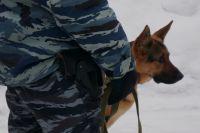 Взрывчатку искали с помощью собак.