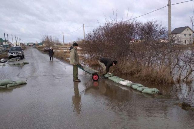 Устройство искусственной дамбы в Научном городке. 2018г.