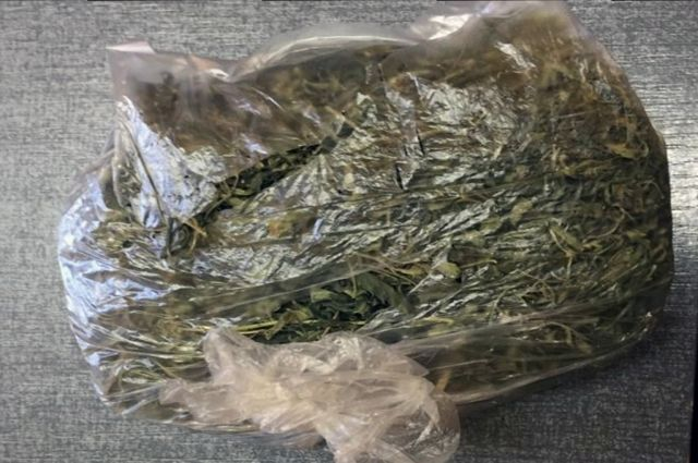 У жителя Озёрска изъяли 300 гр наркотических средств