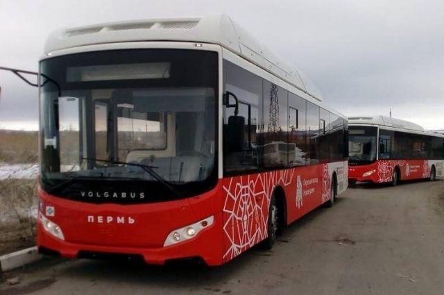 Один автобус сможет вместить до 110 пассажиров.