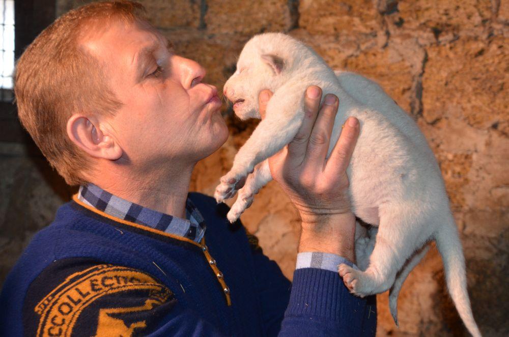 Владелец парка Олег Зубков и белые львята.