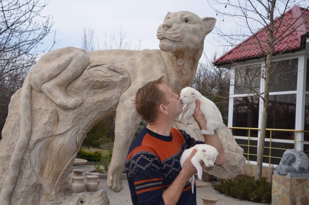 Владелец парка Олега Зубкова и белые львята.