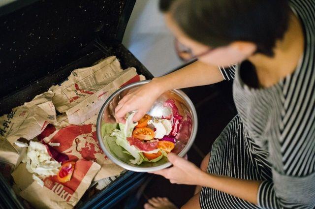 Семья Анны нашла способ безотходно утилизировать даже пищевые отходы.