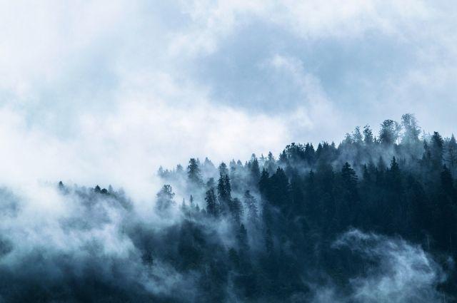 МЧС Оренбуржья: в последний день марта область накроет туман
