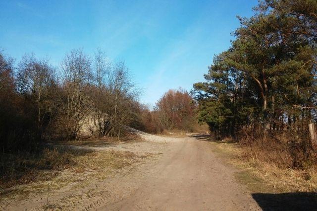 В Приморской рекреационной зоне создадут маршрут протяжённостью в 34 км